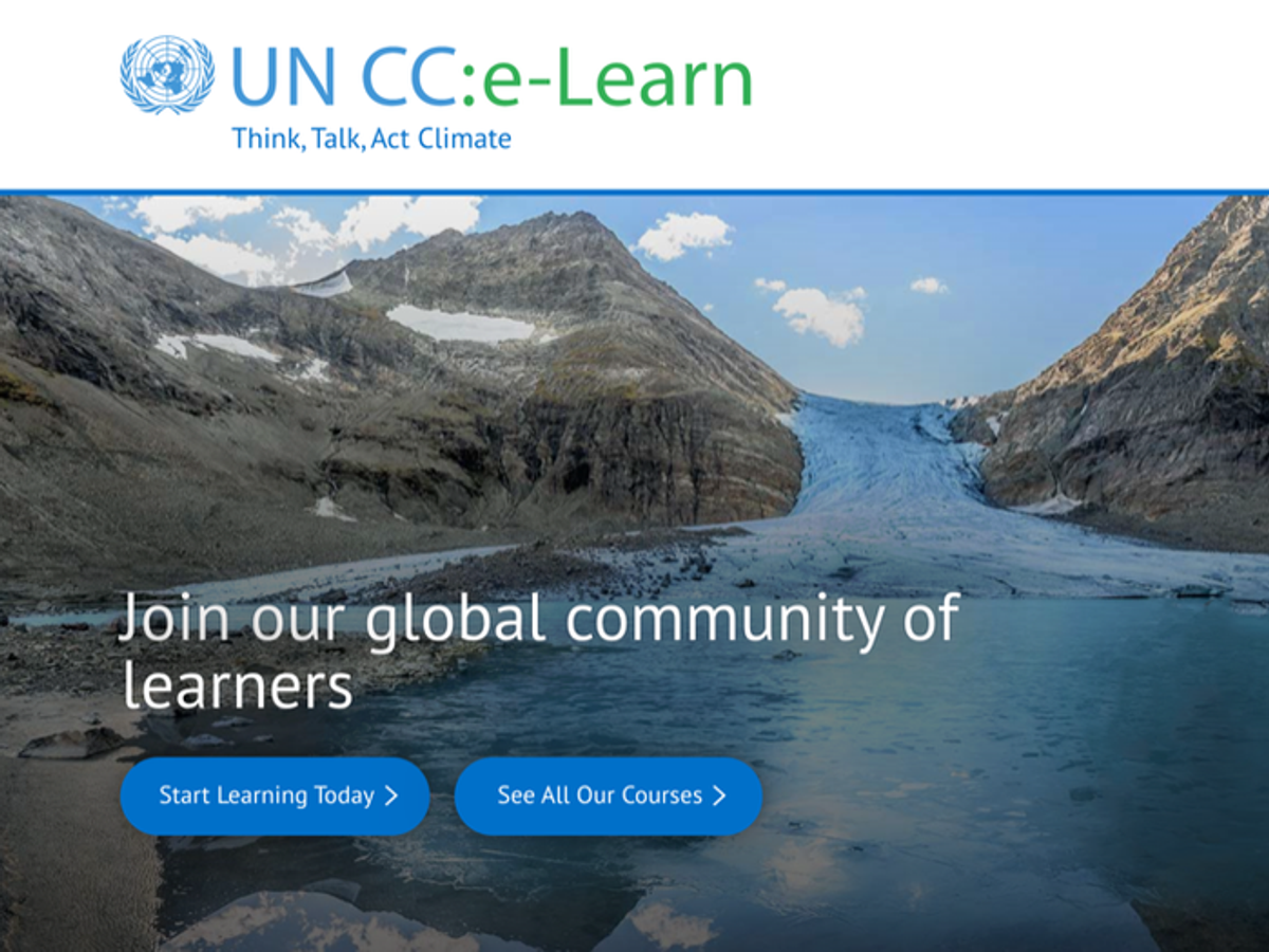 UN CC:LEARN GLOBAL MEMBERS DISCUSS THE PROMOTION OF CLIMATE CHANGE LEARNING TAKING INTO ACCOUNT COVID-19