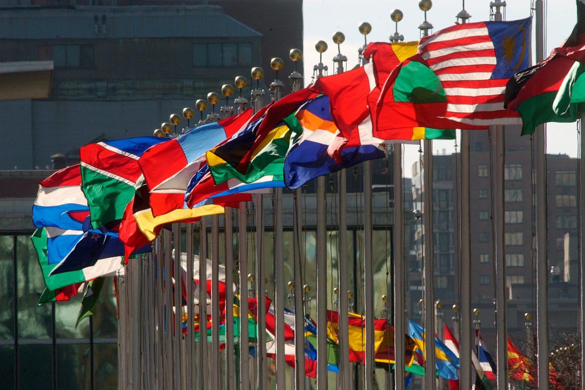 INTERNATIONAL LAW PROGRAMME